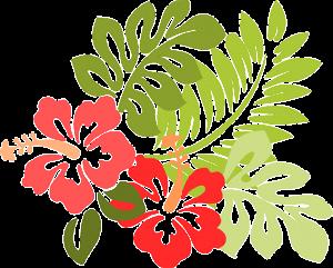 hawaii-309006_640
