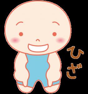 (25)ひざ